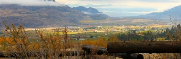 Halloween in the southern Okanagan