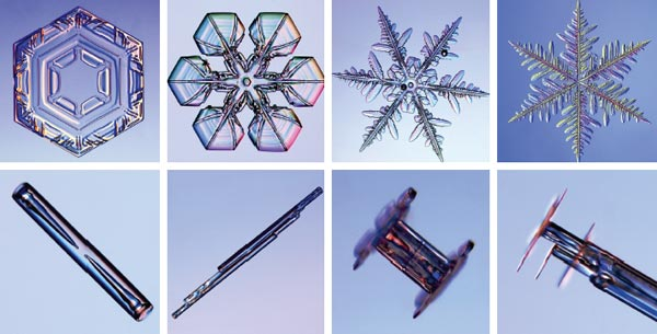 Snowflakes and ice crystals