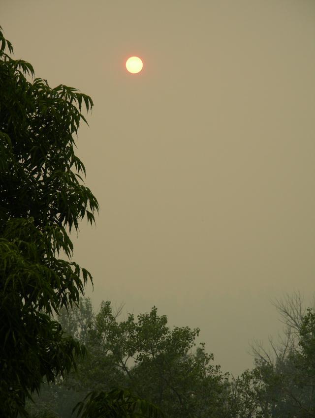 smoke-evening-2