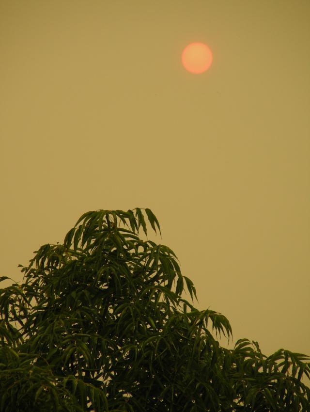 smoke-evening-4