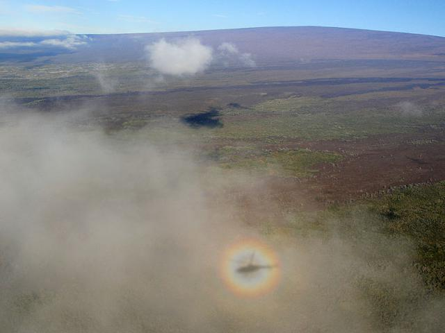 Solar_Glory_with_helicopter_shadow_around_Mauna_Loa-Brocken-Inaglory-CC-BY-SA